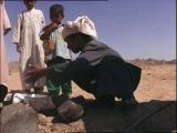 В поисках приключений - Египет (часть 1)